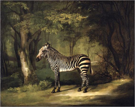 Stubbs Zebra